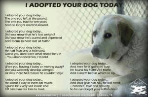 AdoptedDog